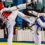 Taekwondo Asian Games 2018