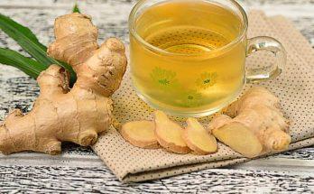 cara membuat obat batuk herbal