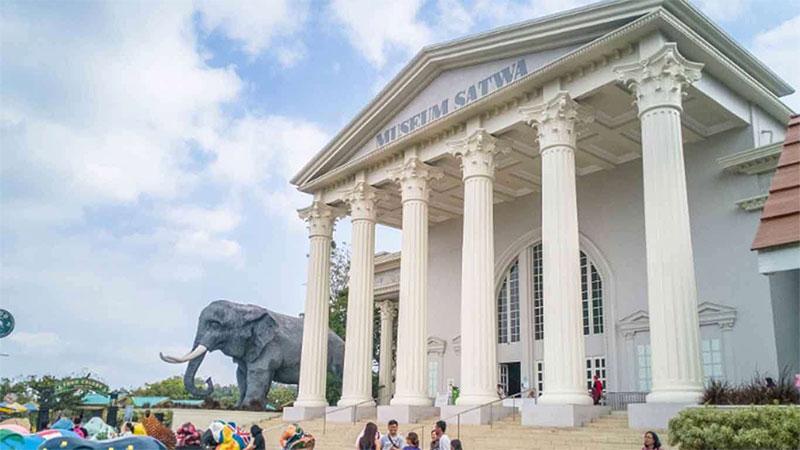 Museum-Satwa